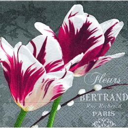 P+ D Serviette, Rembrandt tulips, 3 lagig, 33x33cm, 1/4 Falz