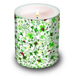 Dekorkerze Candle Ladybugs on Glover, rund 10,5x12cm, in Folie verpackt, 1 Stück