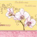 Mank Serviette Orchidee, 3 lagig, 40x40cm, 200 Stück