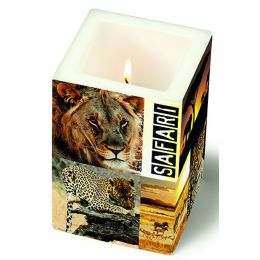 Dekorkerze Safari Tour, eckig 8x8x12cm, in Folie verpackt, 1 Stück