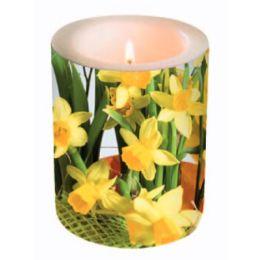 Dekorkerze Daffodil Blossoms, rund 10,5x12cm, in Folie verpackt, 1 Stück
