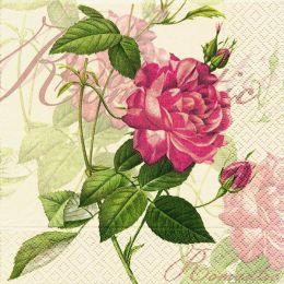 P + D Serviette, Classic rose, 3 lagig, 33x33cm, 1/4 Falz
