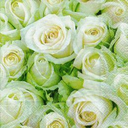 P+ D Serviette, White roses, 3 lagig, 33x33cm, 1/4 Falz